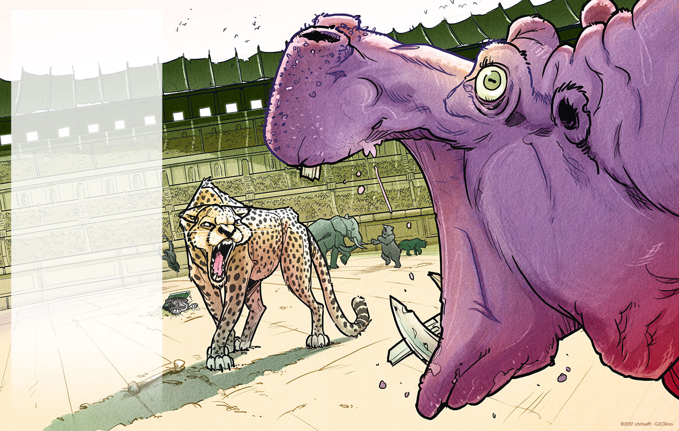 editorial illustration kolosseum with hippo vs cheetah for geolino - christian effenberger